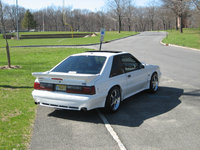 Picture of 1990 Ford Mustang LX 5.0 Hatchback, gallery_worthy