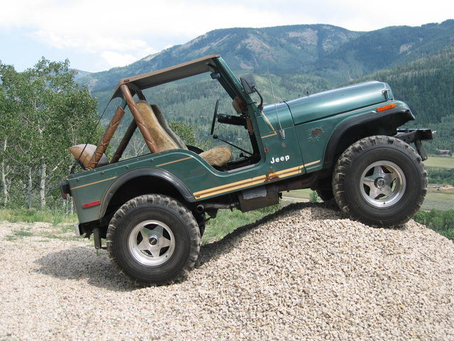 1981 jeep wagoneer pictures cargurus - 1979 Jeep Cj5 Pictures Cargurus