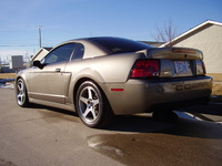 2003 Ford Mustang SVT Cobra 2 Dr Supercharged Coupe picture