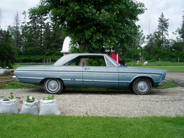 Picture of 1965 Plymouth Fury, gallery_worthy