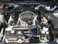 Picture of 2008 Ford Mustang GT Deluxe, engine