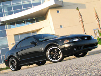 2001 Ford Mustang SVT Cobra 2 Dr STD Coupe picture, exterior
