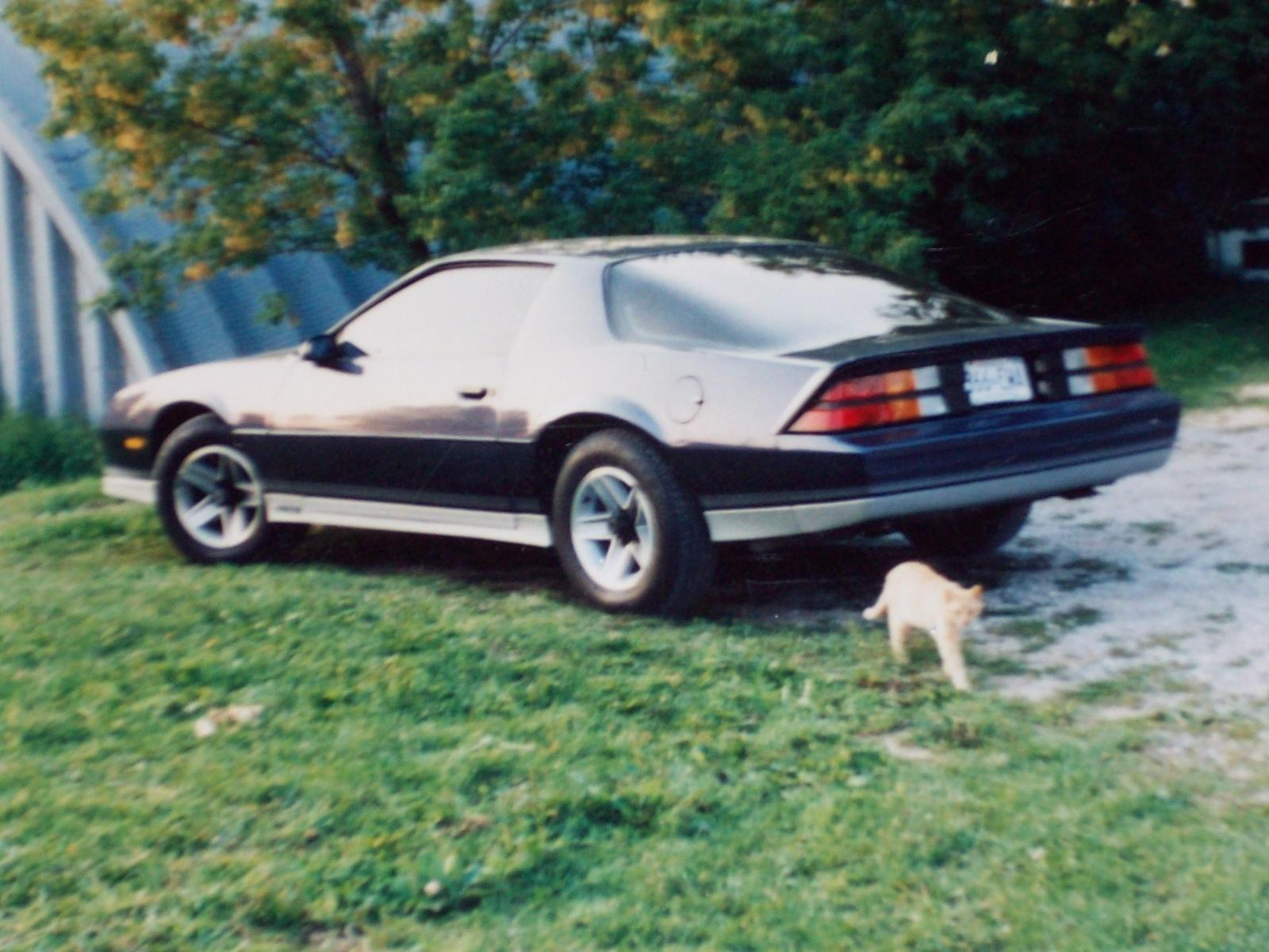 1986 Chevrolet Camaro Pictures Cargurus