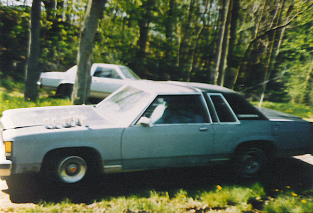 Picture of 1979 Ford LTD, exterior