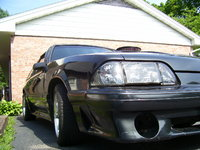 Picture of 1981 Ford Mustang, gallery_worthy