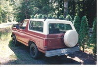 1982 Ford Bronco picture