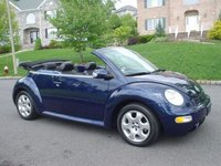 2003 Volkswagen Beetle Picture Gallery