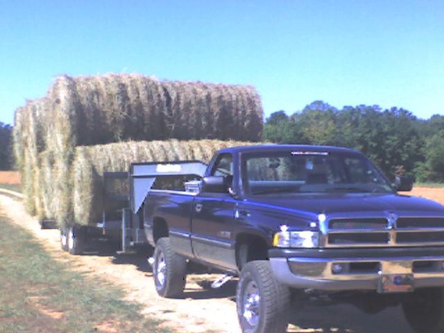 1994 Dodge Ram Pickup 2500 LT Standard Cab LB 4WD, 1994 Dodge Ram Pickup 2500 2 Dr LT 4WD Standard Cab LB picture