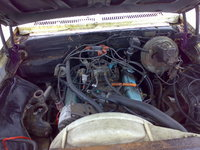Picture of 1978 Buick Skylark, engine