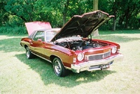 1973 Chevrolet Monte Carlo picture, engine, exterior