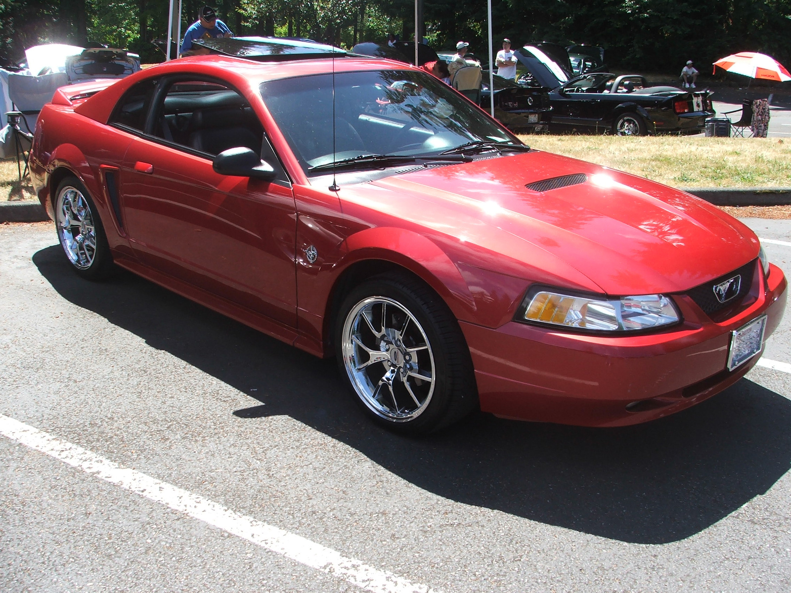 picture of 1999 ford mustang gt coupe exterior. Black Bedroom Furniture Sets. Home Design Ideas