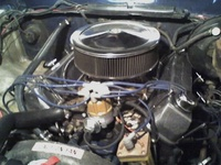 1977 Ford F-250 picture, engine