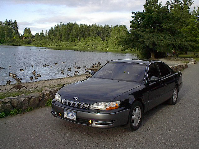 1994 lexus es 300 overview cargurus. Black Bedroom Furniture Sets. Home Design Ideas