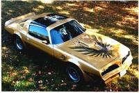 1978 Pontiac Trans Am picture, exterior