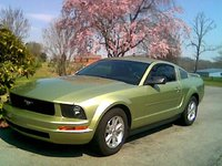 Picture of 2006 Ford Mustang V6 Premium Coupe RWD, exterior, gallery_worthy