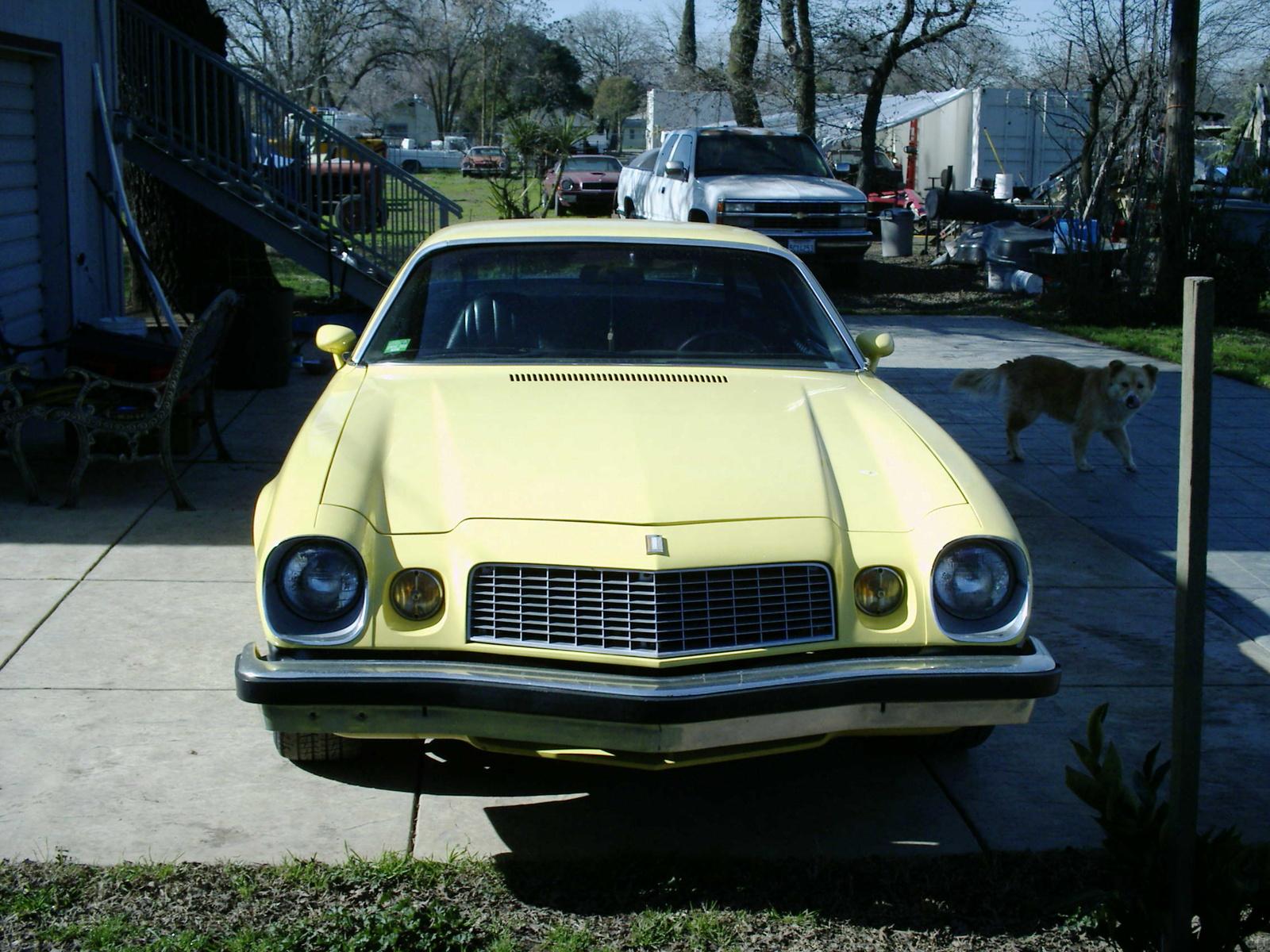 1977 chevrolet camaro pictures cargurus