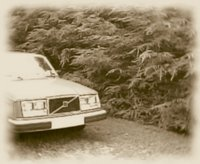 Picture of 1982 Volvo 245, exterior