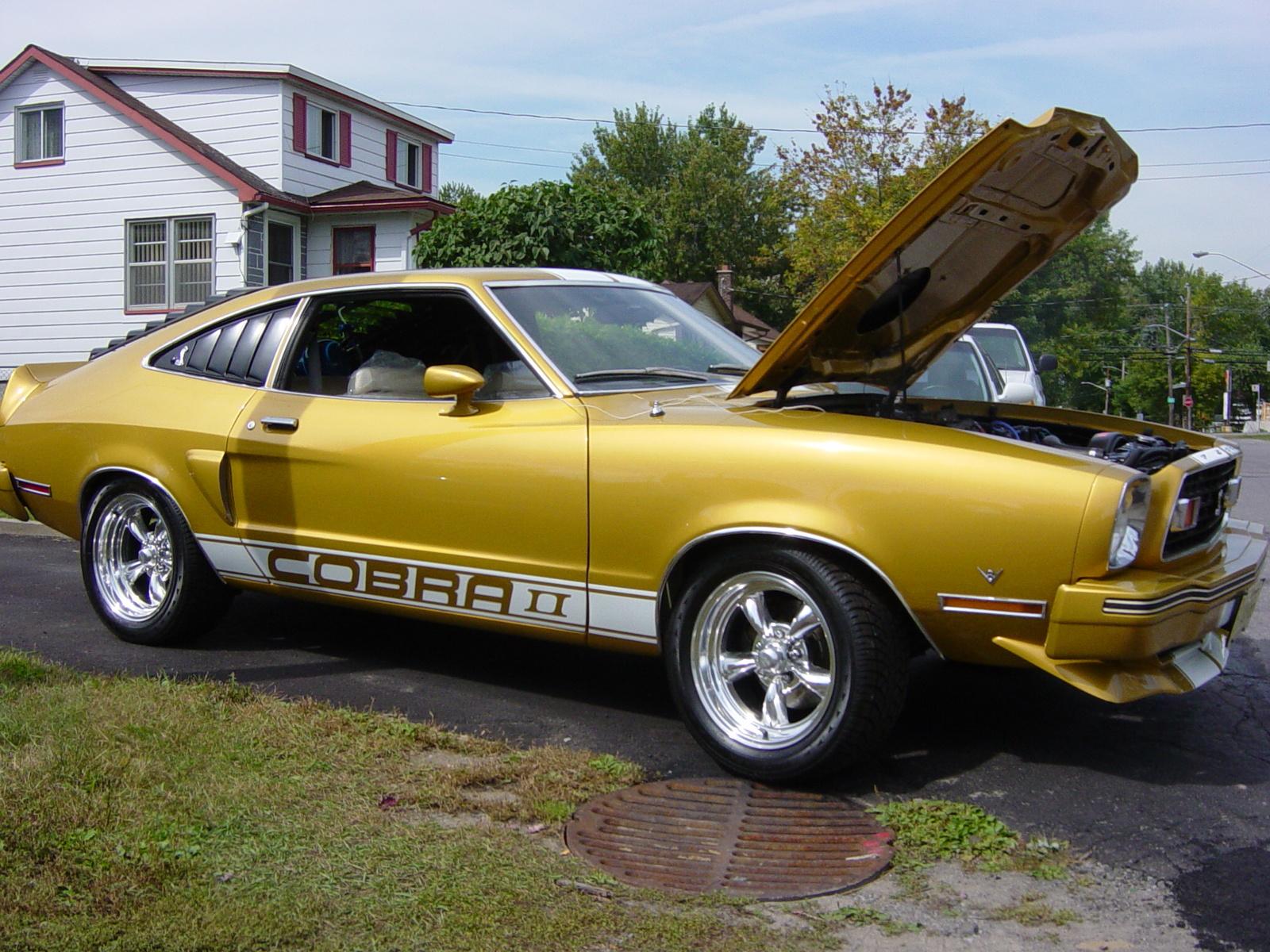 1976 ford mustang cobra ii hatchback. Black Bedroom Furniture Sets. Home Design Ideas