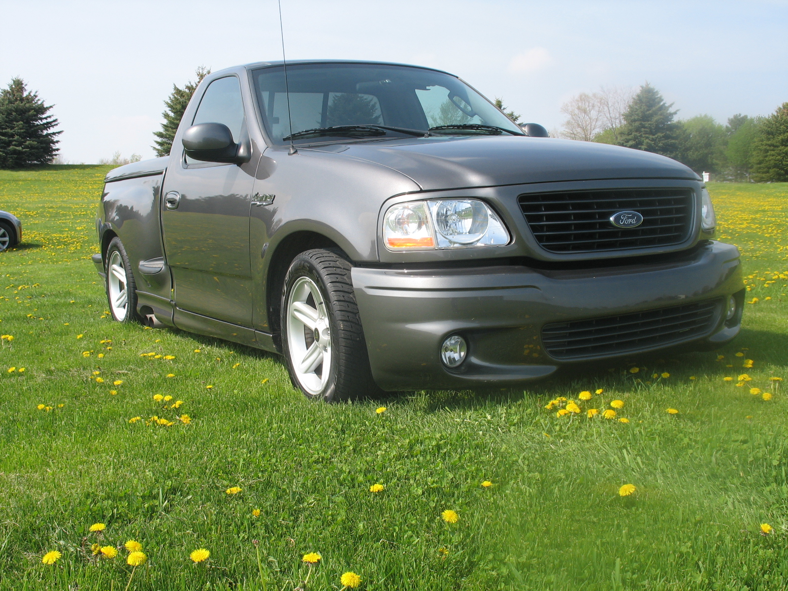 2003 Ford F-150 SVT Lightning 2 Dr Supercharged Standard Cab Stepside SB picture