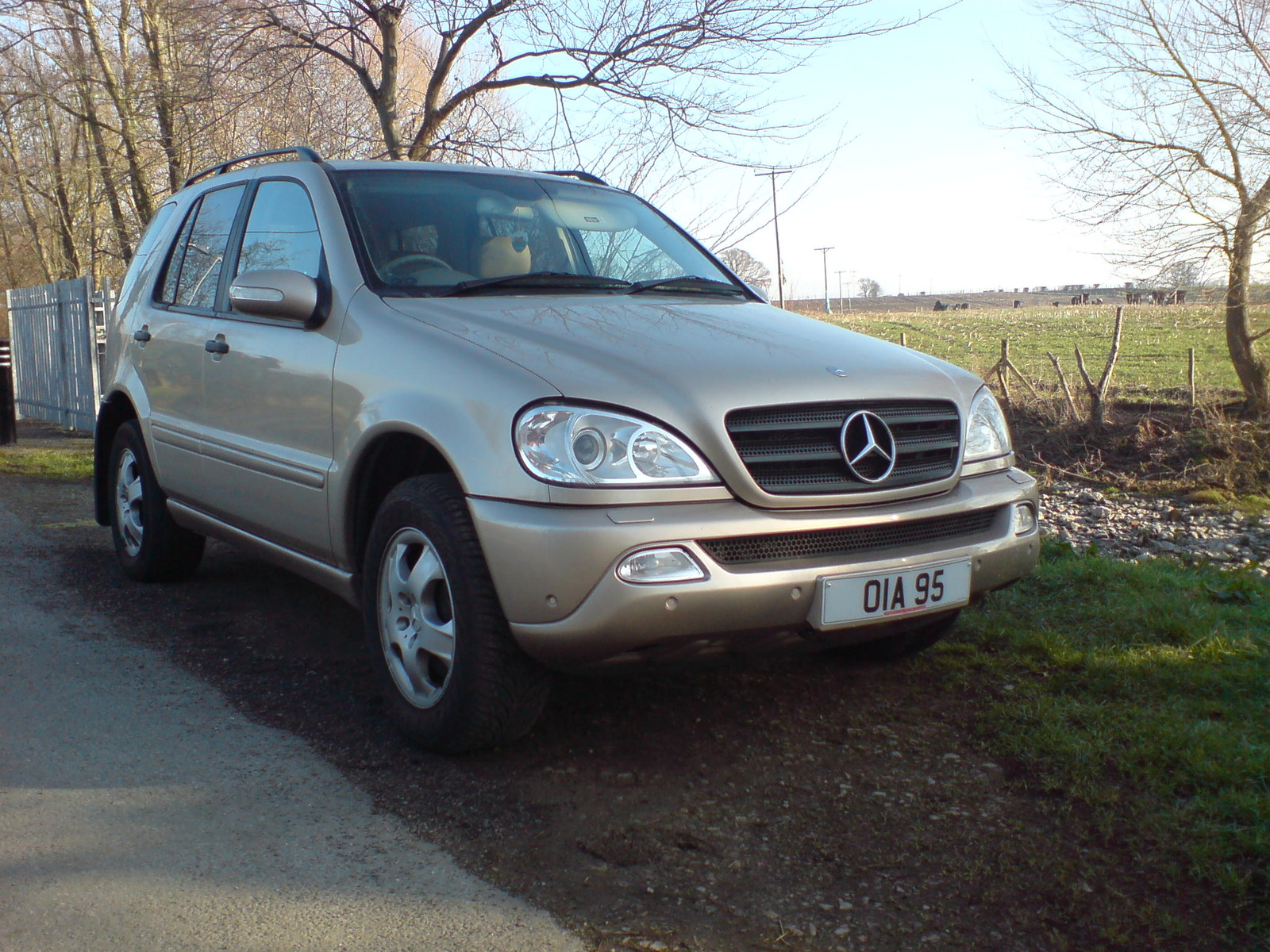 2005 Mercedes-Benz ML500 picture