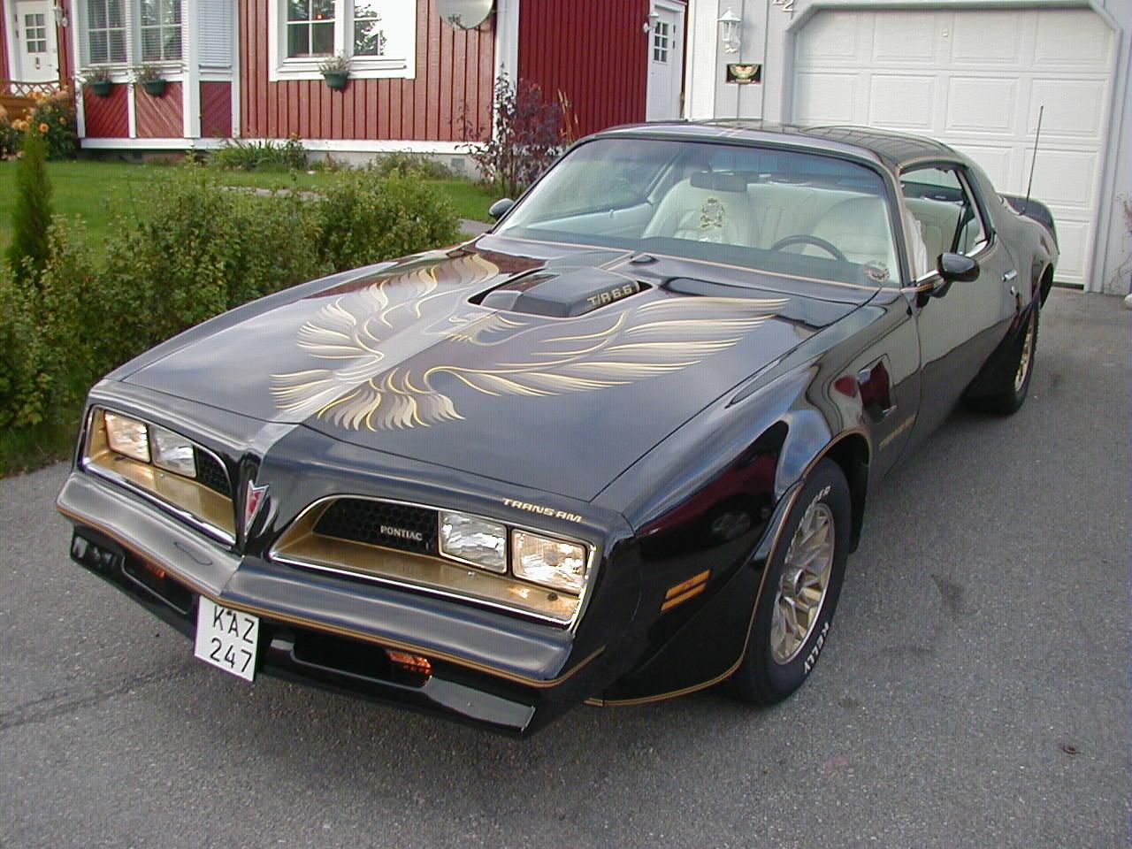 1977 Pontiac Firebird Pictures Cargurus