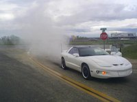 Picture of 1999 Pontiac Firebird Base, exterior, gallery_worthy