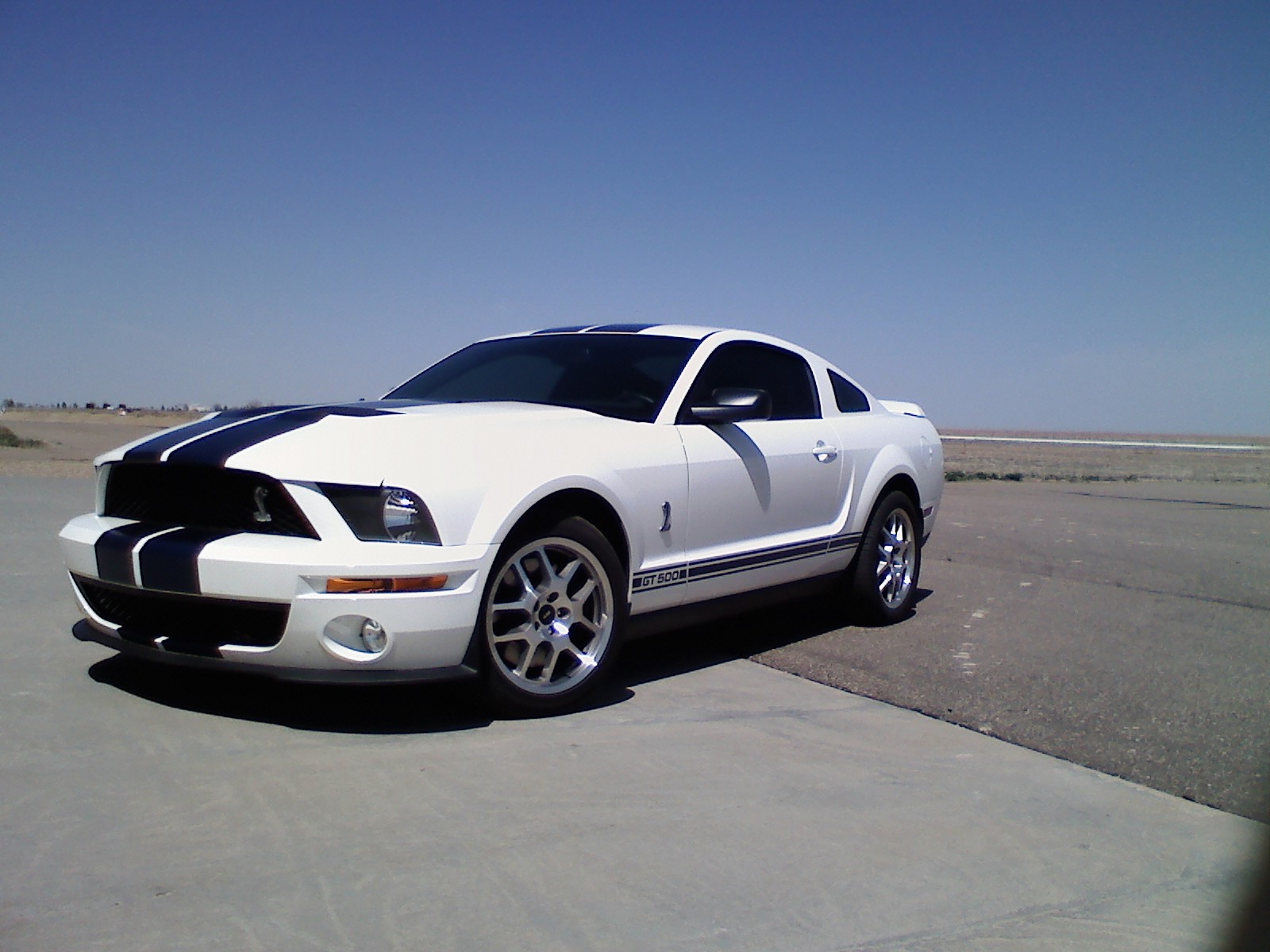 2007 ford shelby gt500 exterior pictures cargurus. Black Bedroom Furniture Sets. Home Design Ideas