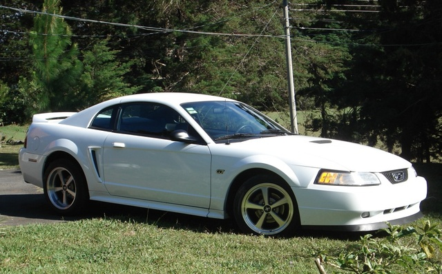 Picture of 2000 Ford Mustang GT Coupe RWD, exterior, gallery_worthy