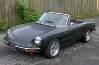 1981 Alfa Romeo Spider Overview