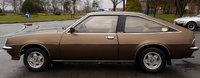 1981 Vauxhall Cavalier Overview