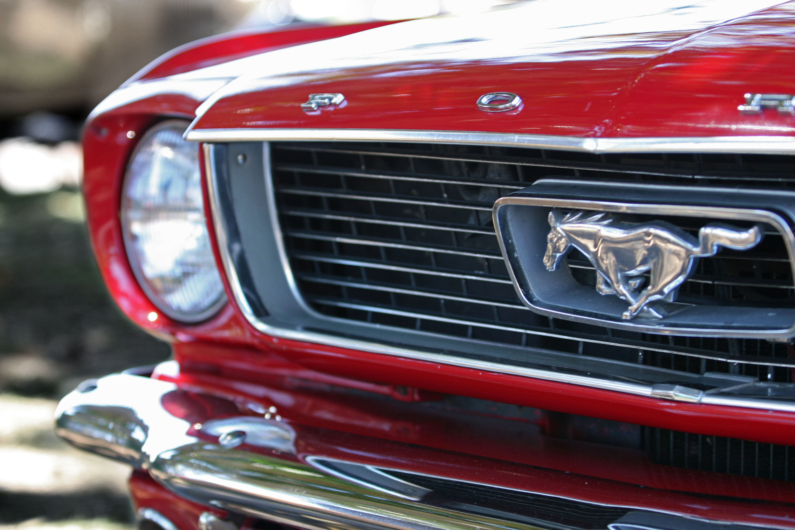 Mustang Quotes Ford Mustang Shelby Quotes  Draccs  Finden Sie Details Über