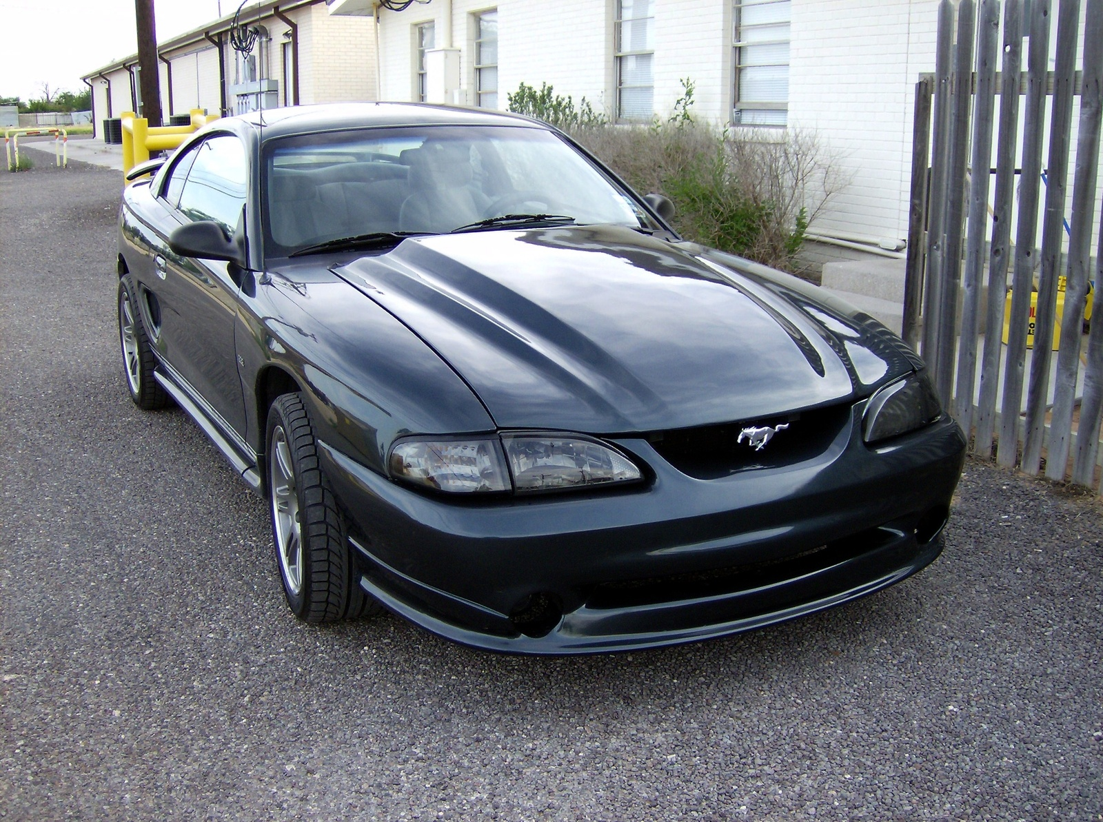 1998 Ford Mustang 2 Dr STD Coupe picture