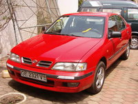 Picture of 1993 Nissan Primera, gallery_worthy