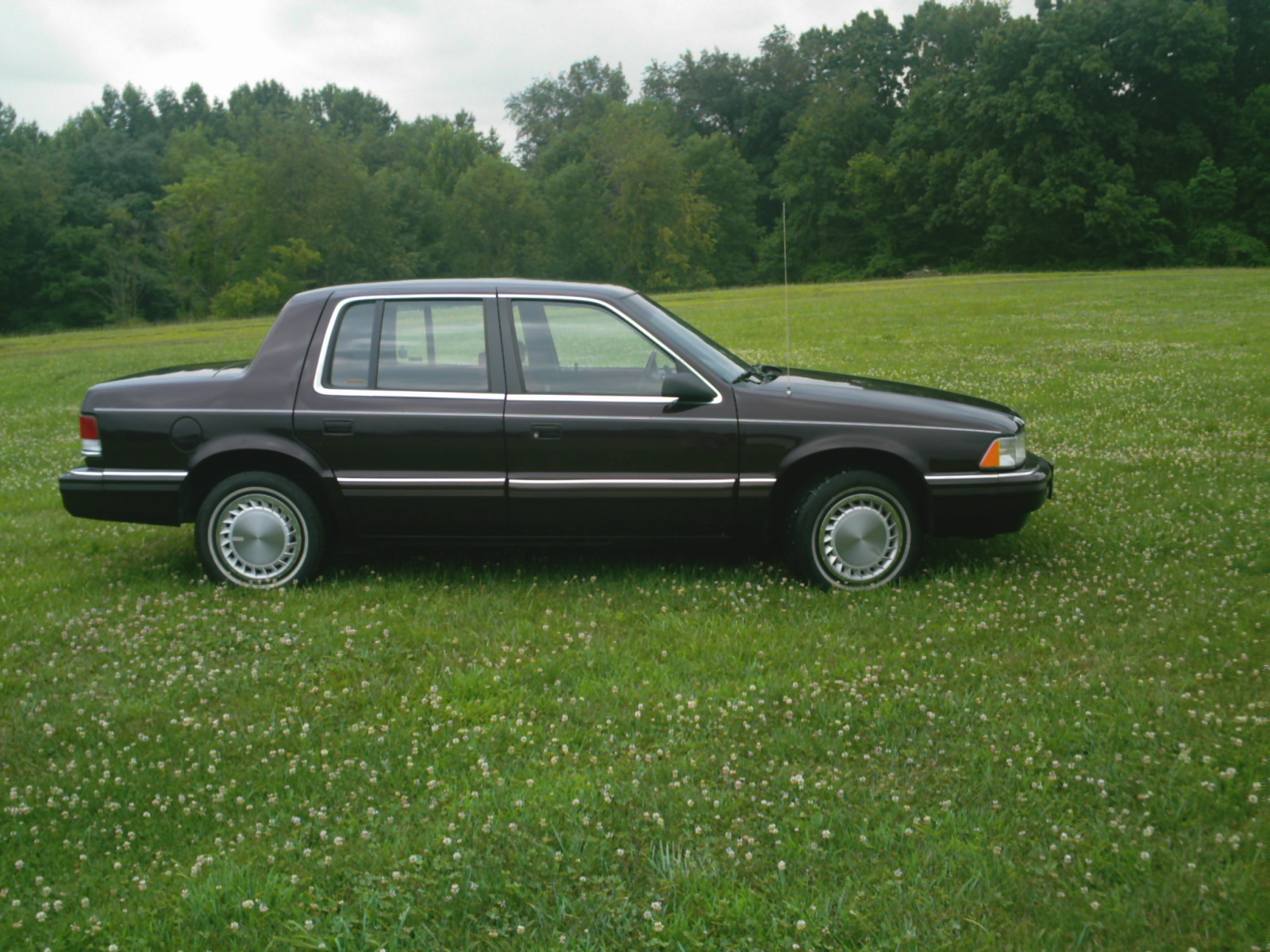 1990 plymouth voyager with 1990 Plymouth Acclaim Pictures C3257 on Watch additionally 5784 1995 Plymouth Voyager 12 further 1987 Plymouth Horizon Overview C15916 as well 1990 Plymouth Acclaim Pictures C3257 pi10659866 also 231928264504.