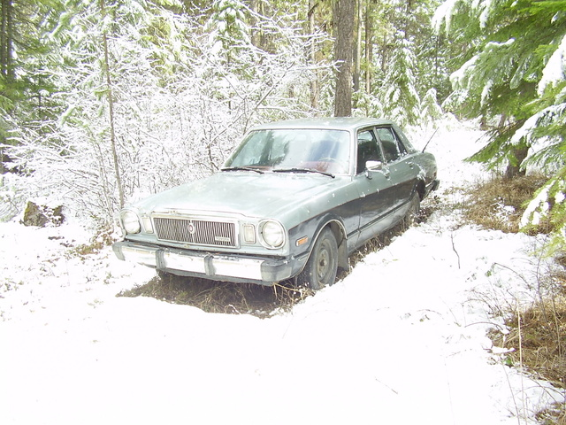 Picture of 1979 Toyota Cressida, exterior, gallery_worthy