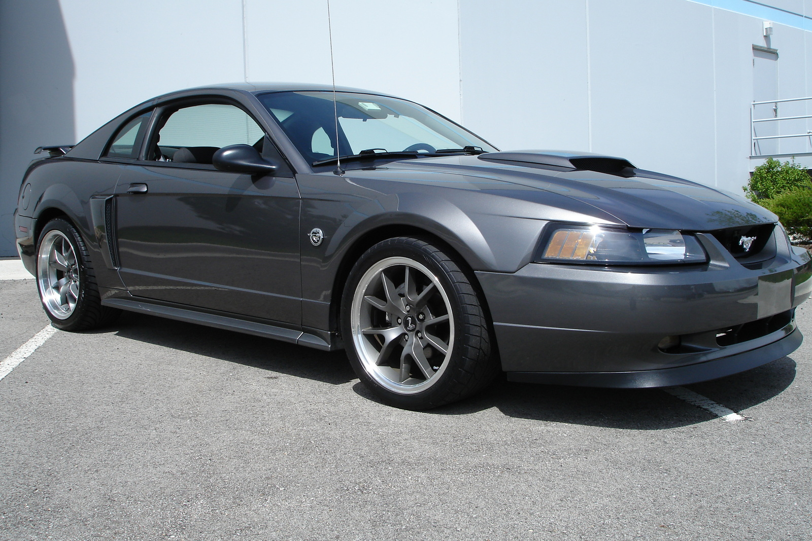2004 ford mustang gt related infomationspecifications weili
