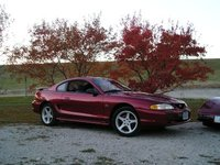 Picture of 1994 Ford Mustang GT Coupe RWD, gallery_worthy