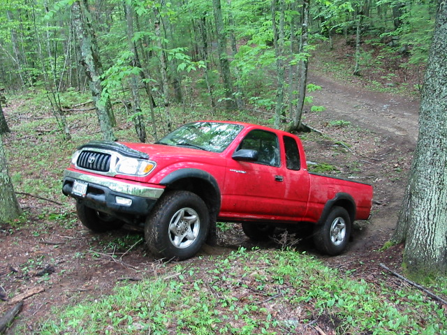 Picture of 2003 Toyota Tacoma 2 Dr V6 4WD Extended Cab LB