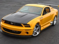 Picture of 2008 Ford Mustang, exterior