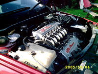 Picture of 1995 Alfa Romeo 155, engine, gallery_worthy