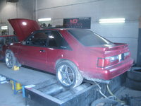 Picture of 1993 Ford Mustang LX 5.0 Hatchback, exterior, gallery_worthy