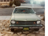 1973 AMC Hornet Overview