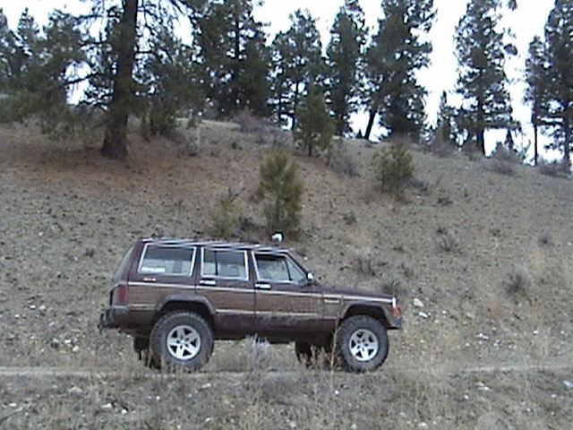 Picture of 1987 Jeep Wagoneer
