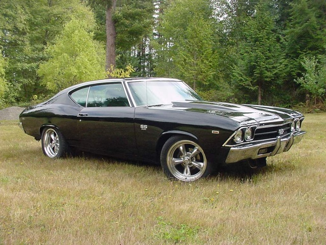 Picture of 1969 Chevrolet Chevelle, exterior, gallery_worthy