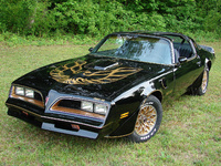 1977 Pontiac Trans Am Overview