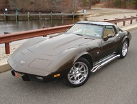 1979 Chevrolet Corvette picture, exterior