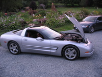1997 Chevrolet Corvette Coupe, 1997 Chevrolet Corvette 2 Dr STD Hatchback picture, engine, exterior