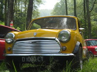 Picture of 1979 Morris Mini, exterior