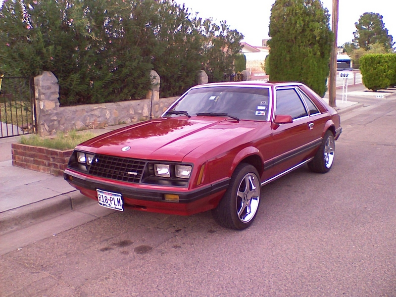 1981 ford mustang pictures cargurus 1981 ford mustang t top 1981 ford mustang ghia performance parts
