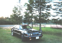 Picture of 1985 Ford Mustang LX, exterior